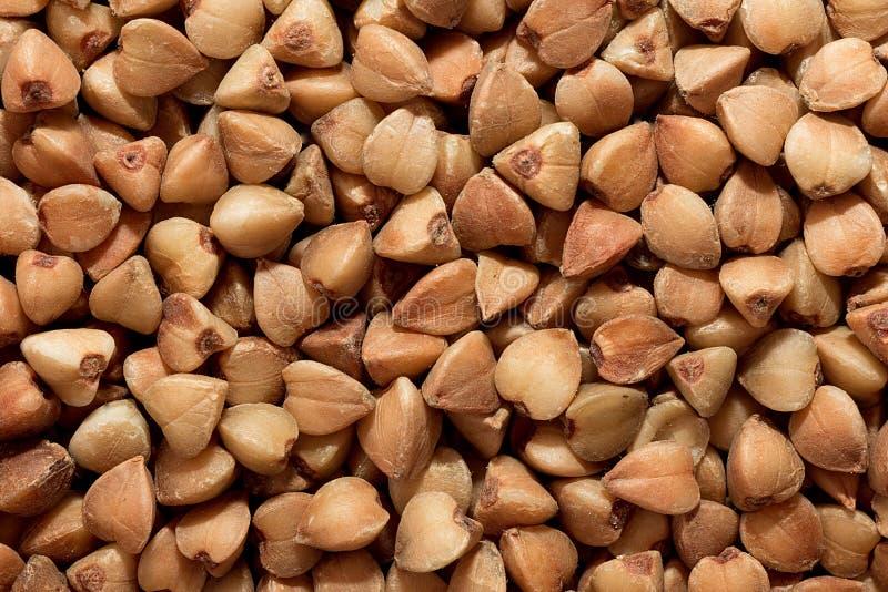 buckwheat fotos de stock
