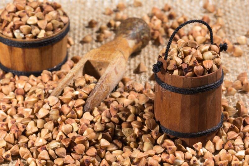 buckwheat fotografia stock
