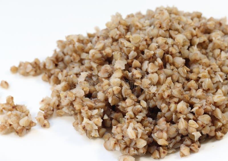 buckwheat fotografia de stock
