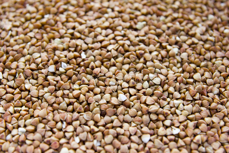 Buckwheat barley royalty free stock photo
