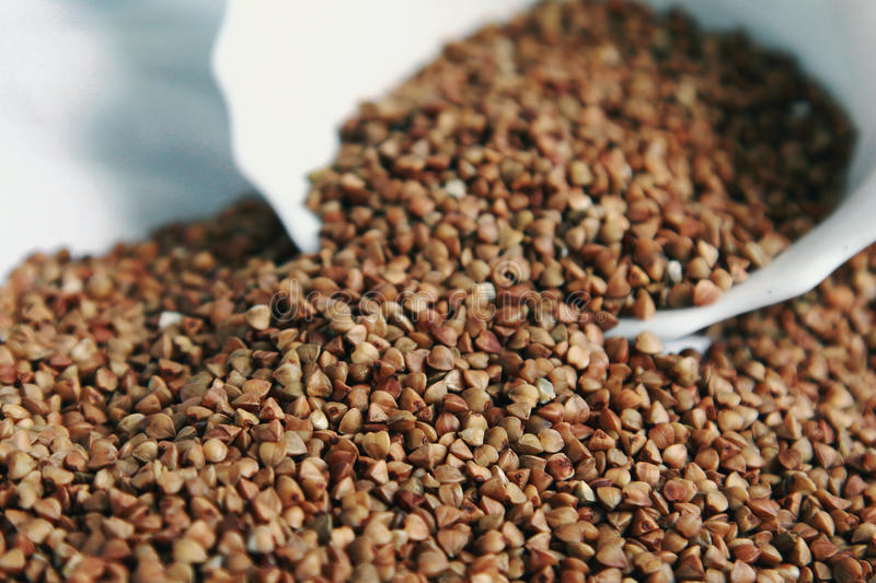 Buckwheat in the white plate royalty free stock image