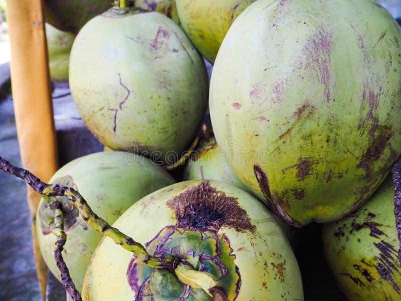 Bucnh von kürzlich geernteten Kokosnüssen stockfotografie