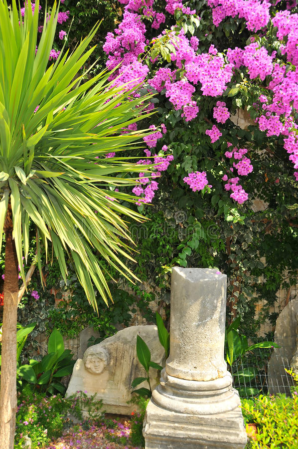 Download Bucolic garden stock image. Image of climber, pillar - 20405727