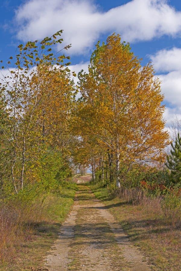 Bucolic Road in autunno immagine stock
