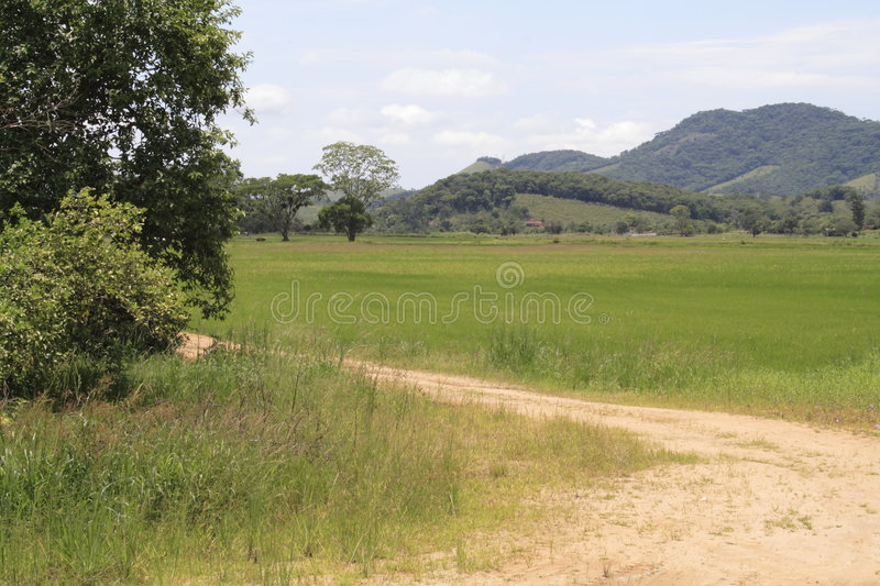 Bucolic View - Santa Catarina. A bucolic view in the country, Santa Catarina state, Brazil. A small path, the fields and hills on the back of the image royalty free stock images