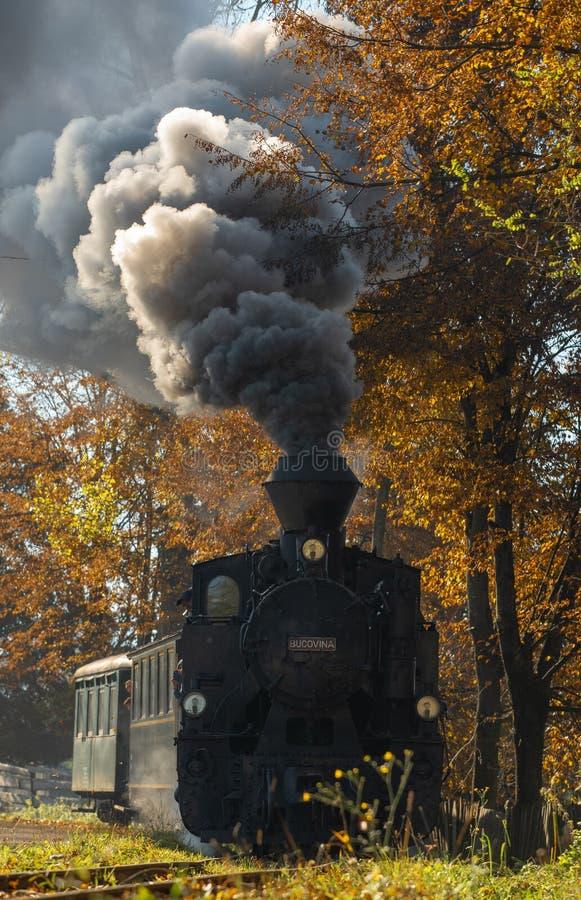 Bucovina秋天日出风景在有薄雾和山的罗马尼亚 库存照片
