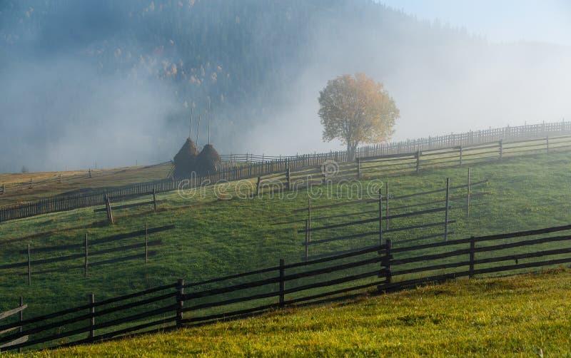Bucovina秋天日出风景在有薄雾和山的罗马尼亚 免版税库存图片