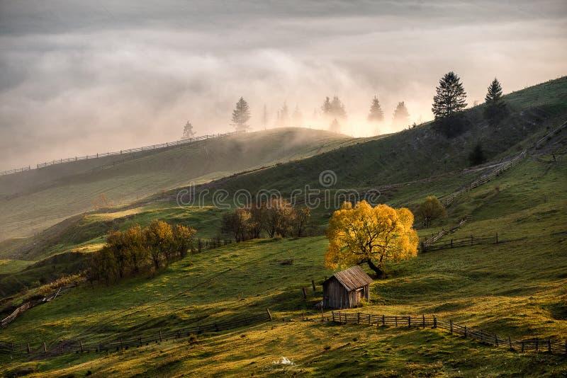 Bucovina秋天日出风景在有薄雾和山的罗马尼亚 免版税库存照片