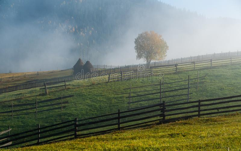 Bucovina autumn sunrise landscape in Romania with mist and mountains royalty free stock images