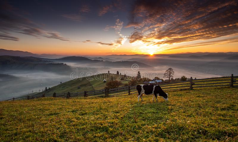 Bucovina autumn sunrise landscape in Romania with mist and mountains. Aerial view from drone royalty free stock images