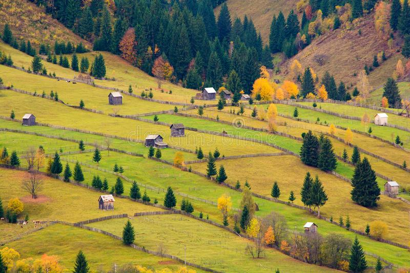 Bucovina bygdlandskap i Rumänien på hösttid arkivbild