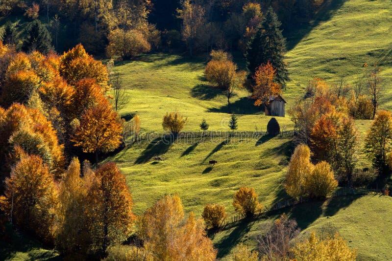 Bucovina-Dorf-Herbstlandschaft in Rumänien lizenzfreies stockfoto