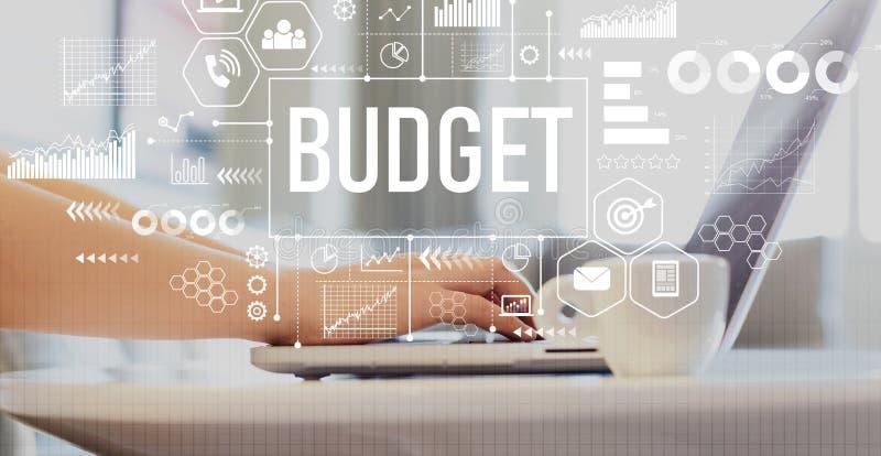 Budżet dla kobiet przy użyciu notebooka zdjęcia royalty free