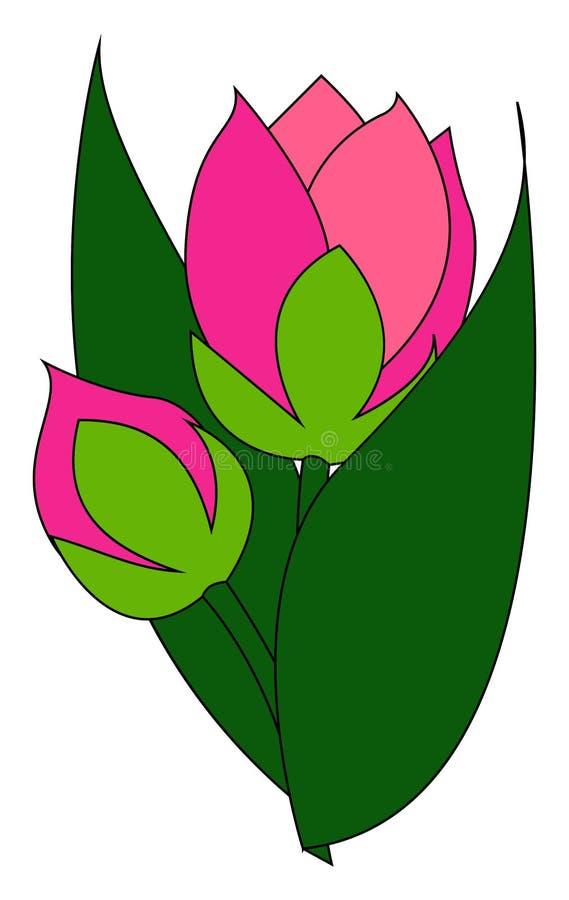 Bud rosa, ilustração, vetor ilustração stock