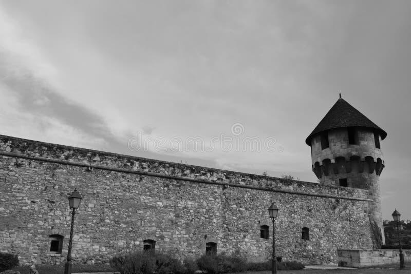 Buda与路灯柱的城堡塔 免版税库存图片