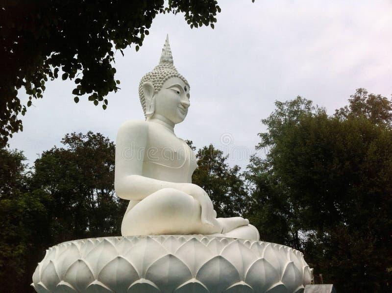 Buda blanco fotos de archivo libres de regalías