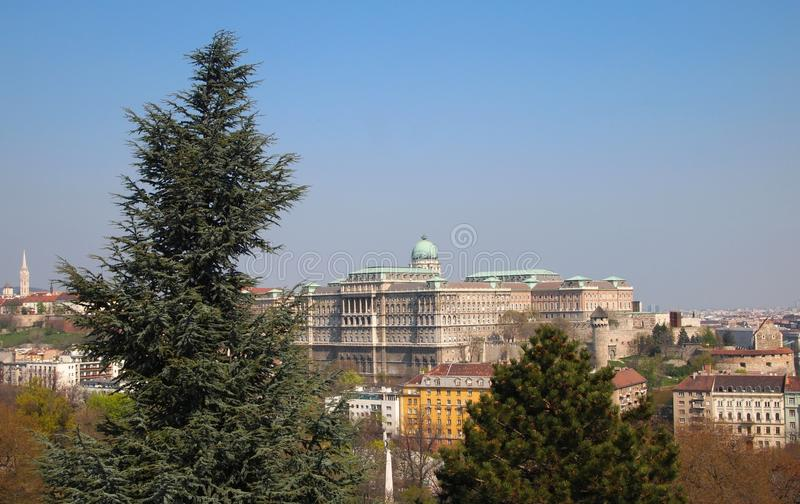 Buda Castle stock photos