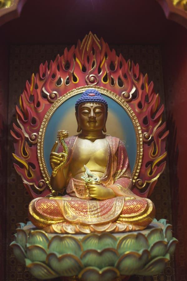 Buda com dragão imagens de stock royalty free