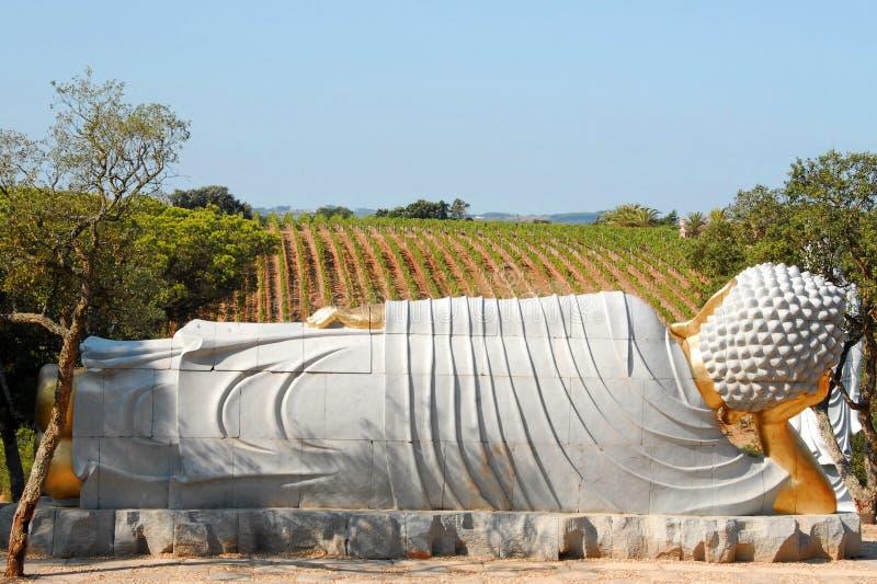 Buda, das den Weinberg schaut lizenzfreie stockfotos