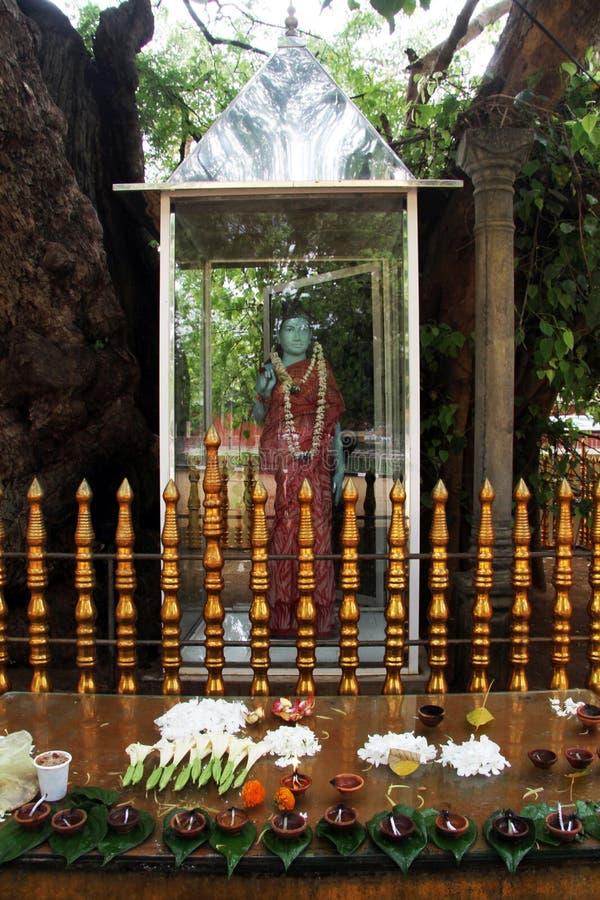 Buda debajo del árbol foto de archivo libre de regalías