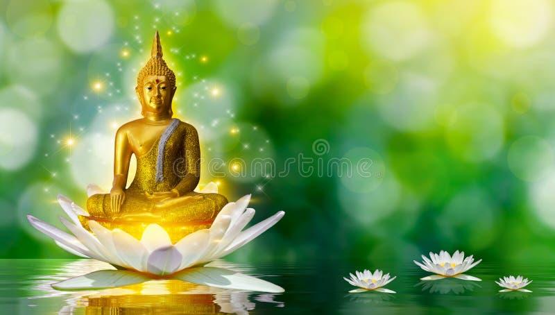 Buda dos l?tus da ?gua da est?tua da Buda que est? na flor de l?tus no fundo alaranjado imagem de stock
