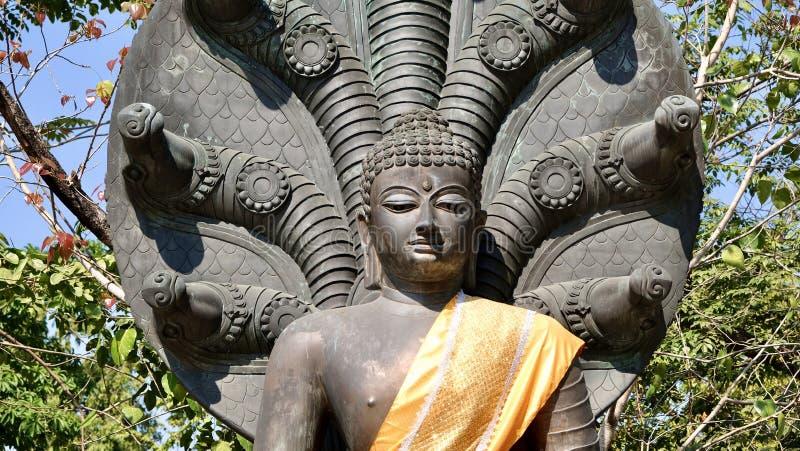 Buda envuelto en tejidos amarillos fotos de archivo libres de regalías