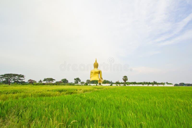 Buda grande em Wat Mung, Tailândia foto de stock royalty free