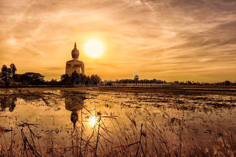 Buda grande en Wat Muang en la Tailandia Durante el mornin temprano foto de archivo libre de regalías