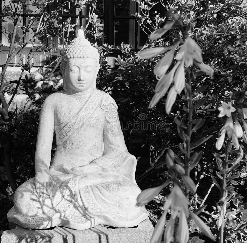 Buda pacífico que medita imagen blanco y negro artística fotografía de archivo