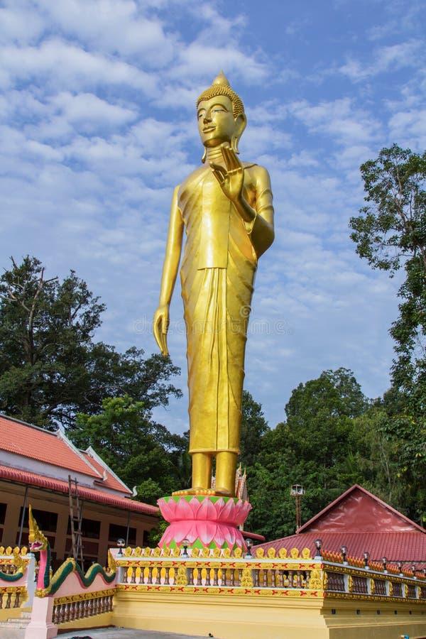 Buda que se coloca en templo fotos de archivo libres de regalías