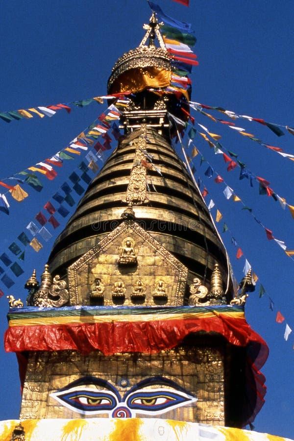 Buda's eyes stock images