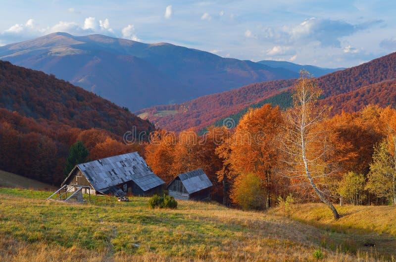 Buda w halnym lasowym jesień krajobrazie fotografia stock