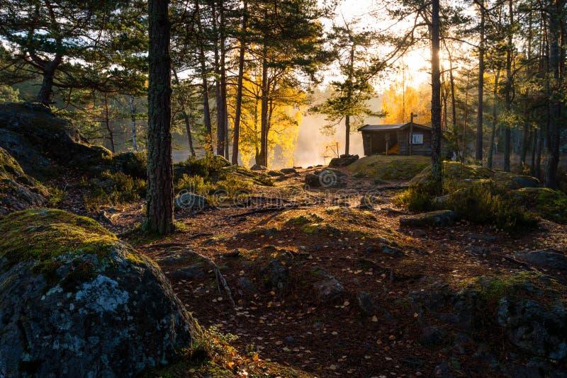 Buda w lesie podczas wschodu słońca zdjęcie stock