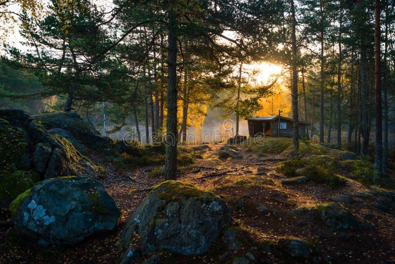 Buda w lesie podczas wschodu słońca obraz royalty free
