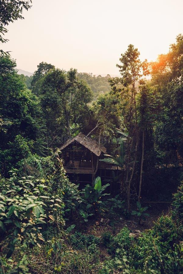 Buda w wieczór świetle I lesie fotografia royalty free