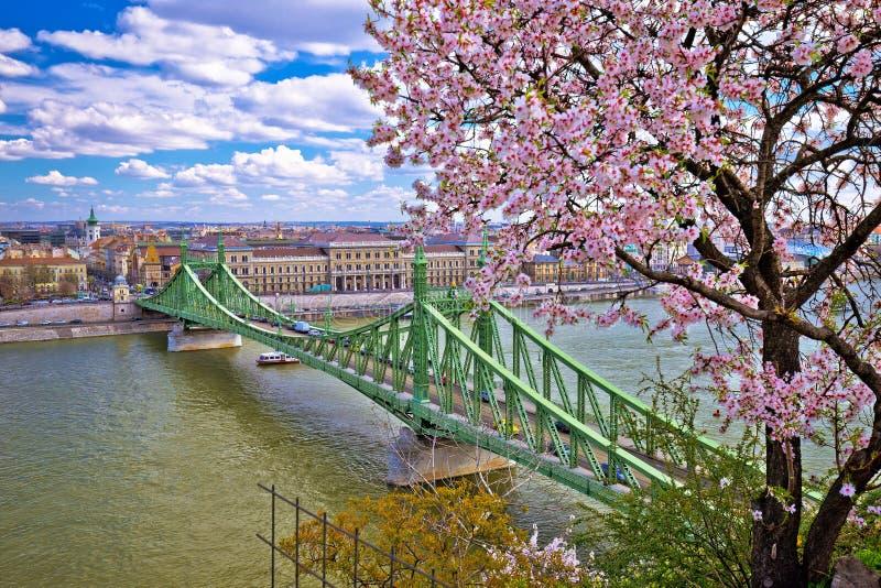 Budapest Danube river and Liberty bridge panoramic springtime view. Capital of Hungary royalty free stock image