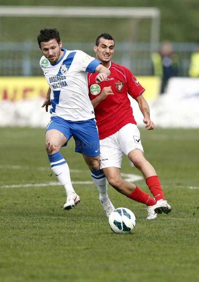 MTK Budapest - liga húngara do banco de Budapest Honved OTP footbal imagens de stock