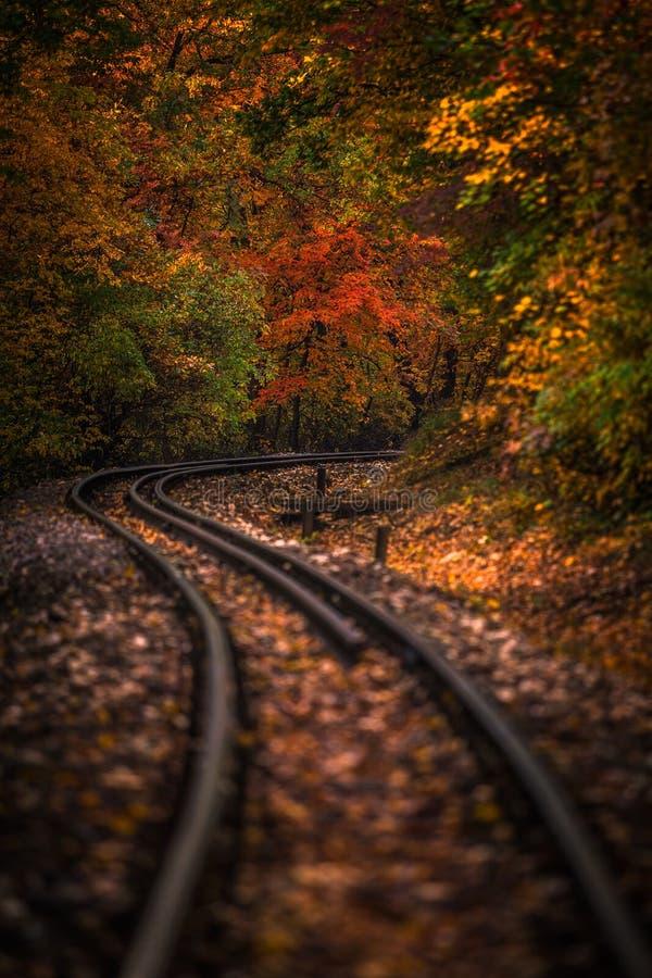 Budapest, Hongrie - formez les voies dans les bois d'autum de Huvosvolgy avec le beau feuillage coloré photographie stock libre de droits