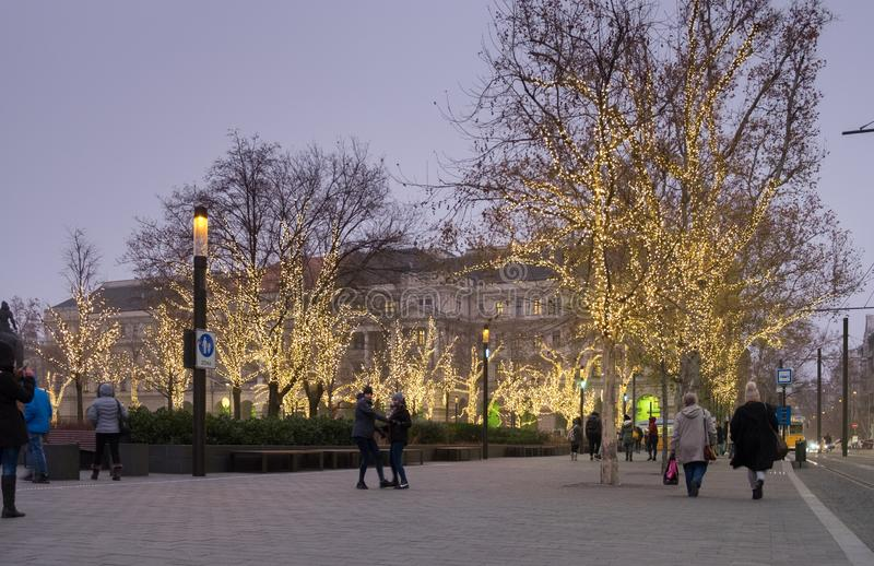 Christmas illuminated trees next to Budapest parliament royalty free stock images