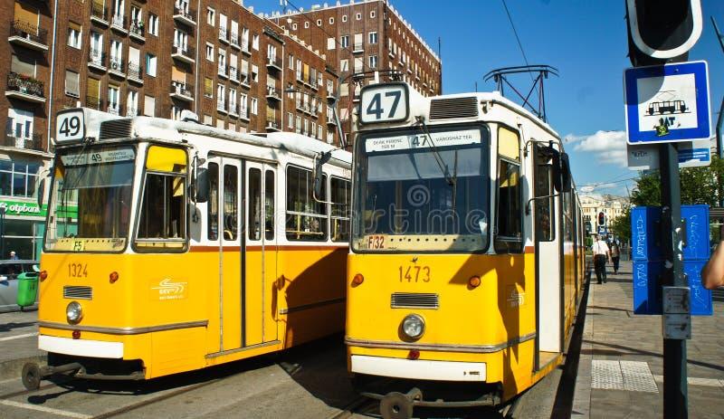 Budapest Hungría - 15 07 2015: Tranvía amarilla en la calle fotos de archivo libres de regalías