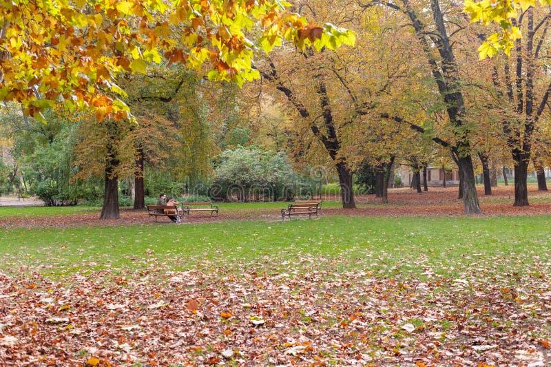 BUDAPEST, HUNGRIA - 26 DE OUTUBRO DE 2015: Parque no quadrado dos heróis, Budapest Hungria O par está sentando-se no banco foto de stock