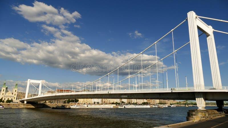 Budapest med Elisabeth Bridge arkivbilder