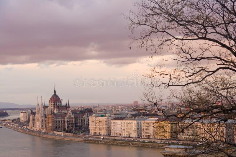 Budapest romántica, Hungría, en invierno, con el parlamento y las ramas de árbol desnudas en la visión fotografía de archivo