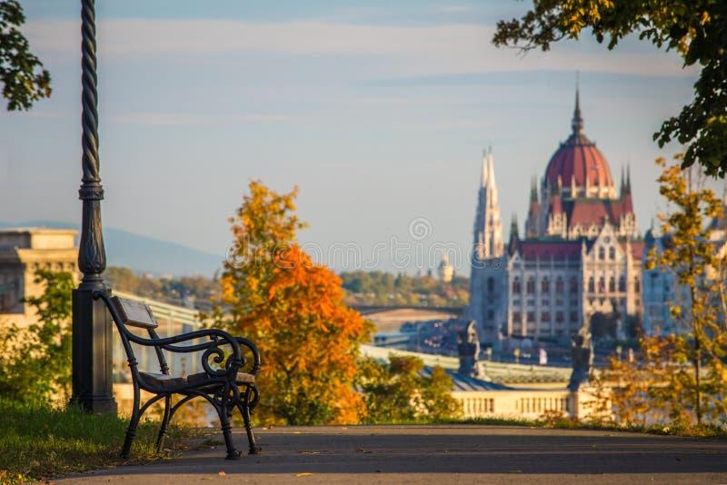 Budapest Ungern - bänk och höstlövverk på den Buda kullen med den ungerska parlamentet royaltyfri bild