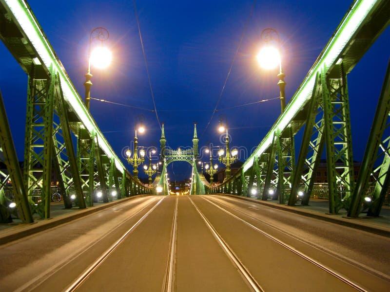 Budapest, Ungheria, ponte di libertà, scena di notte fotografia stock libera da diritti