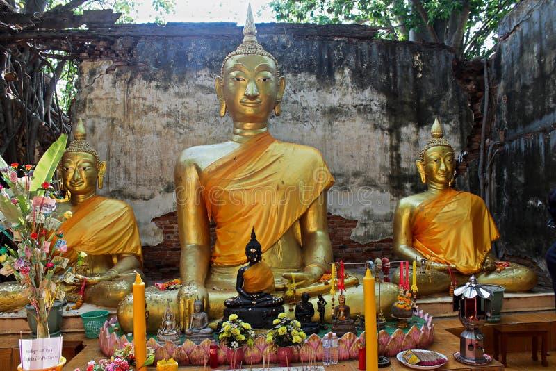 3 Budas em Ang Thong Tree Temple imagem de stock
