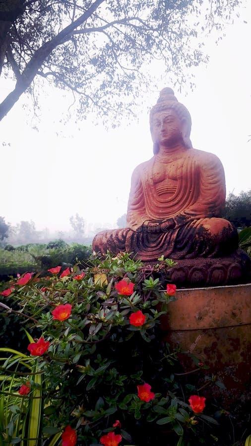 Budda zdjęcie royalty free