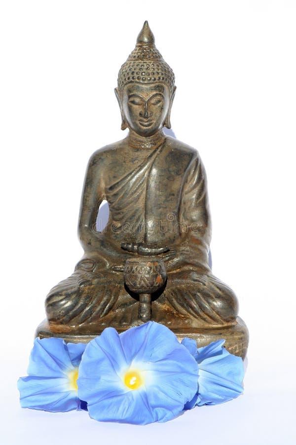 Budda buddha con las flores azules foto de archivo