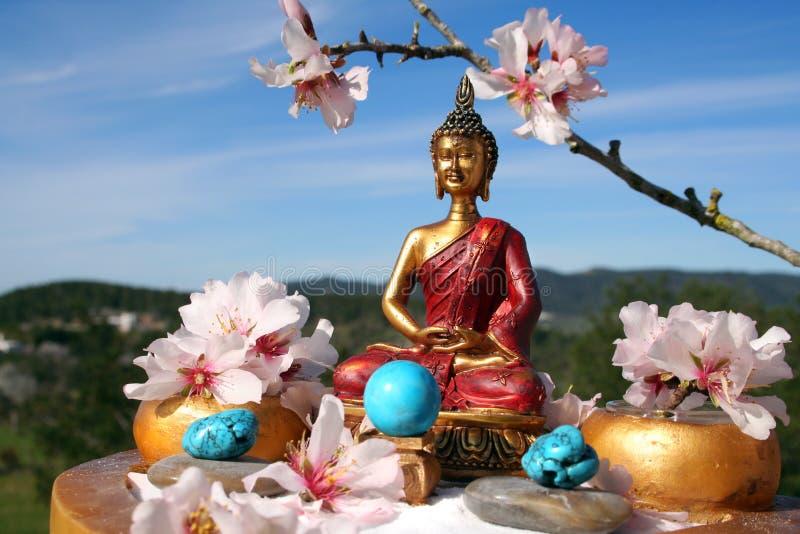 budda ogrodu medytacji zen. obraz stock
