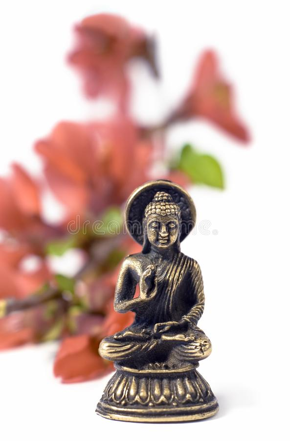 Buddahblommor isolerade red